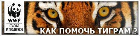 WWF - Как помочь тиграм?