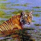 Тигры в живописи
