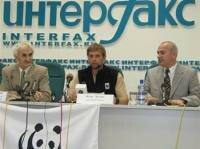 Сколько в России Амурских тигров?