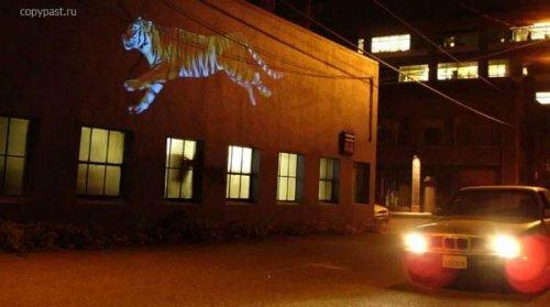 Бегущий виртуальный тигр