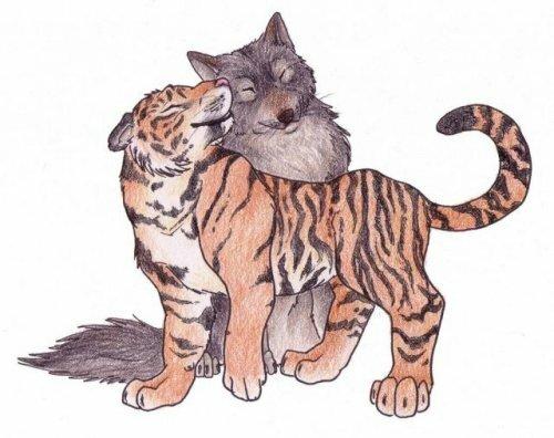 Тигры и волки