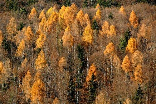 Село Тигрицкое, Минусинский район Красноярского края