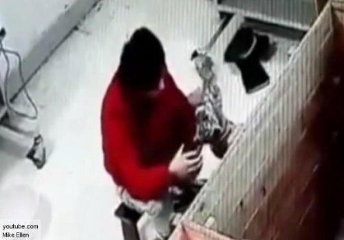 Сотрудник зоопарка в Китае издевался над новорожденным тигренком